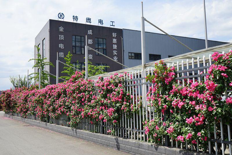 带您走进四川电缆厂家金顶电缆的厂区